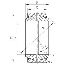 INA GE45-DO-2RS plain bearings