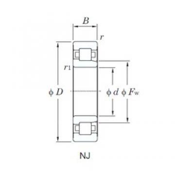 75 mm x 160 mm x 37 mm  KOYO NJ315 cylindrical roller bearings