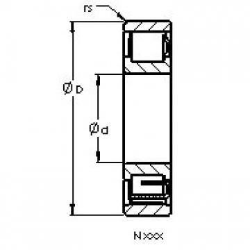 AST N315 cylindrical roller bearings